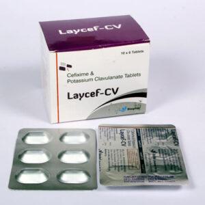 LAYCEF-CV